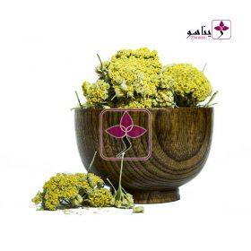 گل بومادران کردستان ژیناسو - گل بوژانه